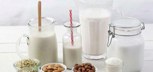 شیر و انواع آن